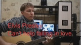 Elvis Presley - Can't help falling in love (cover Dima Eropkin)