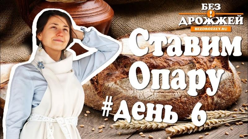 Ржаная Закваска День 6 Ставим Опару для Бездрожжевого Хлеба