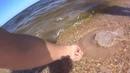 Pitbike_ural video