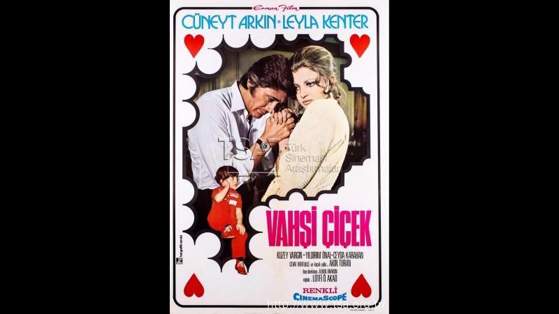Vahşi Çiçek (1971) - Cüneyt Arkın _ Leyla Kenter