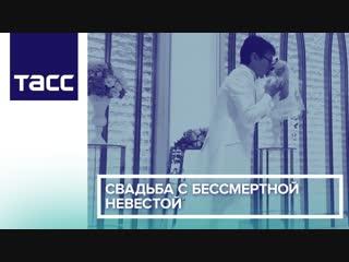 Свадьба с бессмертной невестой