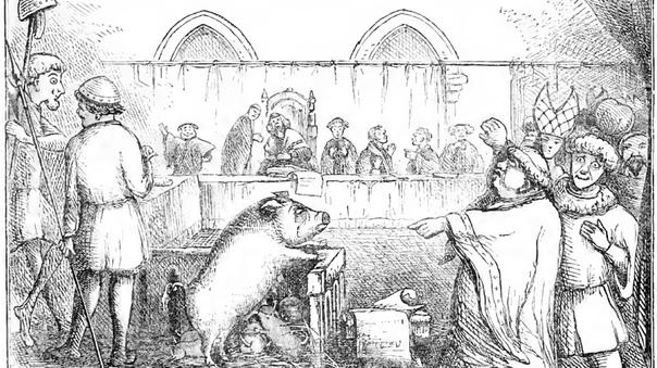 Краткая история животных (и неодушевлённых предметов), отданных под суд На протяжении столетий неодушевлённый предмет или животное могли быть привлечены к ответственности — и наказаны! — за