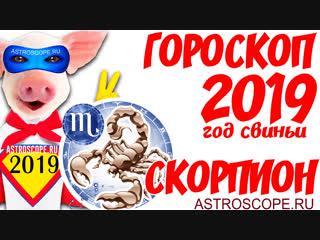 Гороскоп на 2019 год Свиньи Скорпион: гороскоп для знака Зодиака Скорпион на 2019 год