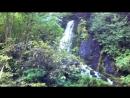 водопад Птичий Клюв,на высоте 1400 м Абхазия.сентябрь 2018