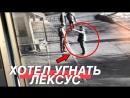 Sergey Stilov ХОТЕЛИ УГНАТЬ МОЙ ЛЕКСУС. ОХРАНА ВПИСАЛАСЬ