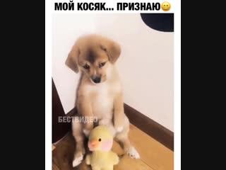 Нельзя просто так взять и не простить его)