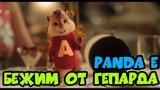 Элвин и Бурундуки поют Panda E (CYGO) Бежим как будто от гепарда