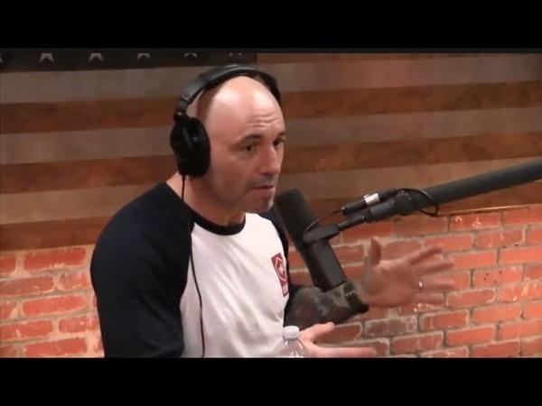 Joe Rogan - The Problem with Refined Sugar Carbs