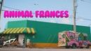 Chucho Flash - Animal Frances Video Oficial