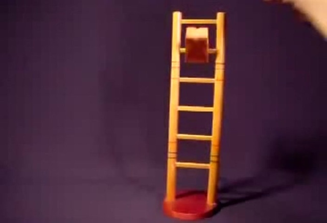 Descending cat from Ladder