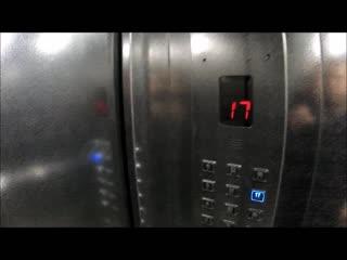 Видео обзор за 4 января 2019 года ЖК Клевер парк кв 252