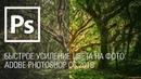 Быстрое усиление цвета на фото Adobe Photoshop CC 2018    Уроки Виталия Менчуковского