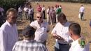 День кукурузного поля
