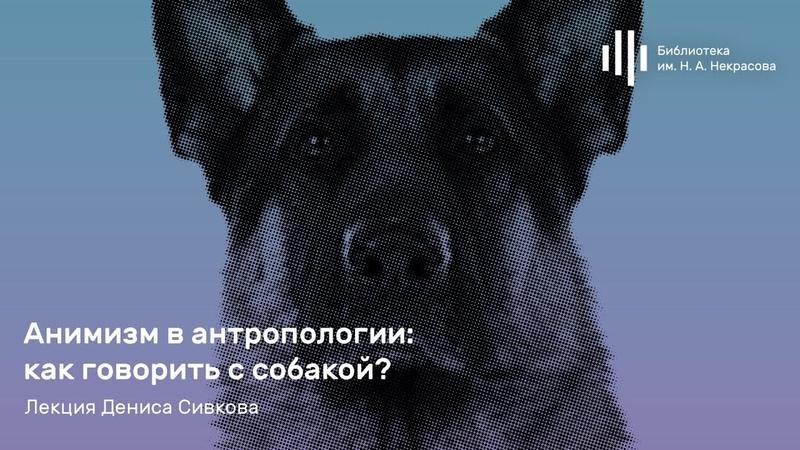 «Анимизм в антропологии как говорить с собакой» Лекция Дениса Сивкова