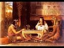 Земледелец Египта Майский Жук