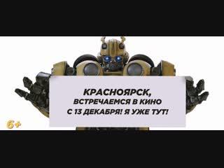 Bumblbee_15s_Krasnoyarsk_TLR-1_S_51_2K_20181121_IOP_OV