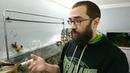 Удобрения для аквариумных растений. Что же лить? Зачем? Сколько?