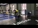 Спарринги ЦЕ Русич: Бокс