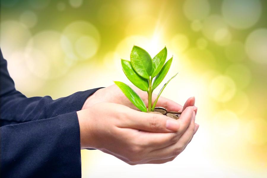 Как правильно давать милостыню, делать пожертвования, чтобы деньги всегда водились, сопутствовала удача