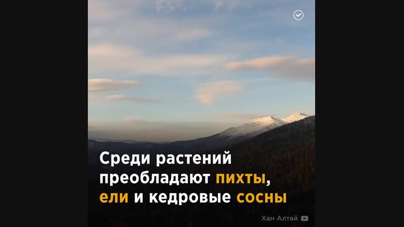 Кузнецкий Алатау ― единственный и уникальный заповедник в Кемеровской области
