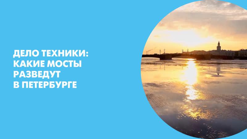 Дело техники: какие мосты разведут в Петербурге