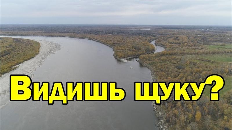 Где искать щуку на незнакомой реке Рыбалка на спиннинг осенью Рыбалка с Aikoland TV