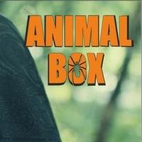 Логотип Дальневосточный тропический комплекс Animal Box