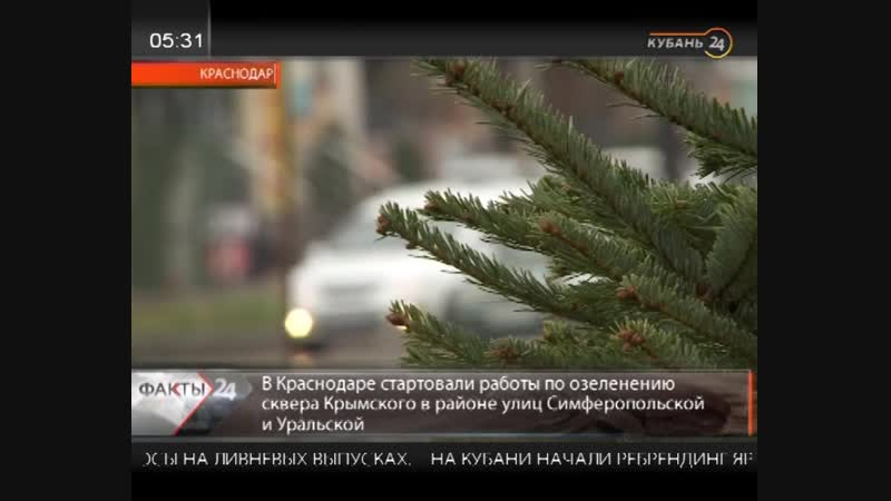 В Краснодаре стартовали работы по озеленению Крымского сквера