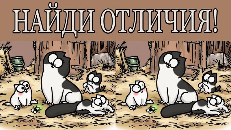 Найди отличия - кот саймона (канал бесконечность)