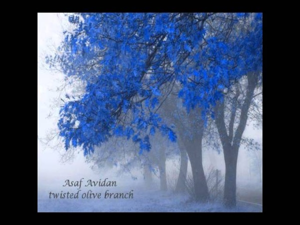Asaf Avidan - Twisted Olive Branch