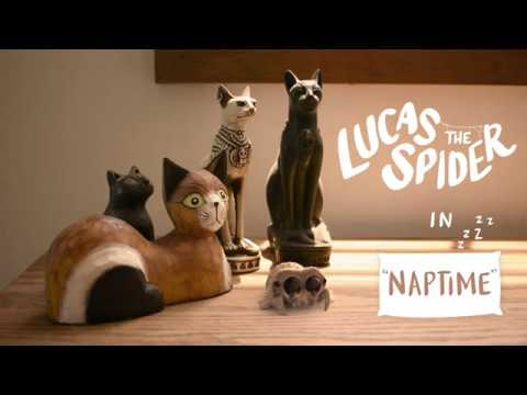 Lucas the Spider - Naptime