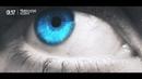 Trapcode - Eclipse [VIOLET TIDES]