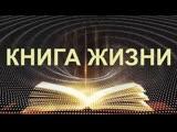 КНИГА ЖИЗНИ THE BOOK OF LIFE