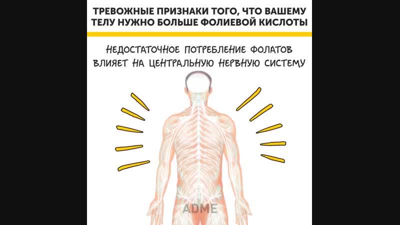 Признаки нехватки фолиевой кислоты