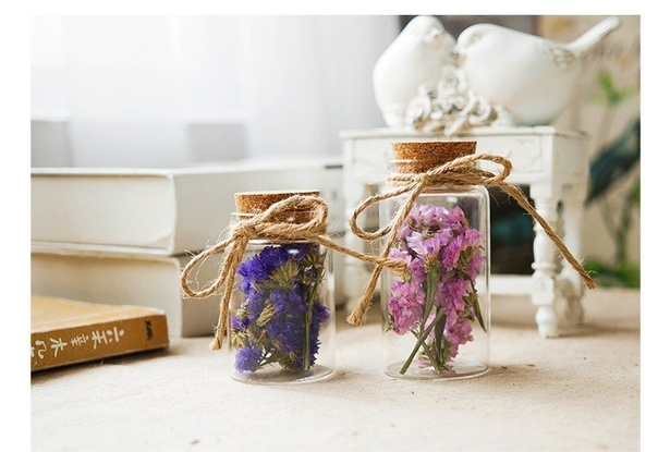 Засушенные цветы для декора- 🔥 © alipab.ru.