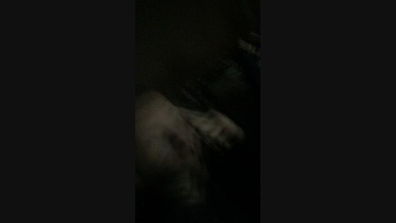 Ёлка зерноград