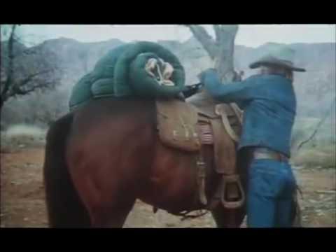 Electric Horseman Trailer