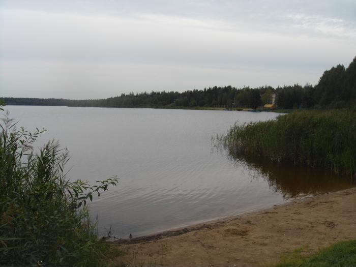 Жителям обеспечили доступ к озеру Долгому в Дмитрове по настоянию Минэкологии Подмосковья