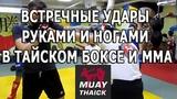 Встречные удары руками и ногами для тайского бокса и мма, условные бои (видео урок с тренировки)