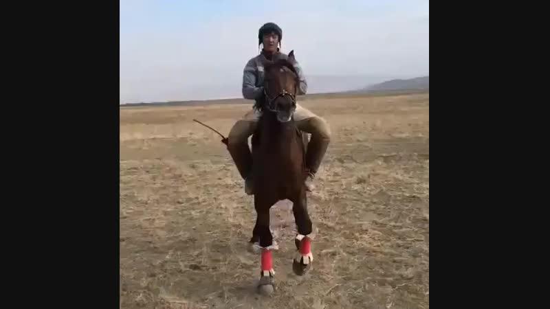 Қазақ атары