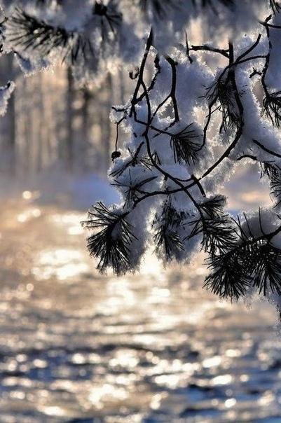 Главное не место, где находишься, а состояние духа, в котором пребываешь.
