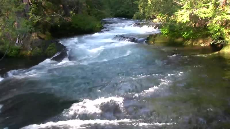 ♥♥ Relaxing 3 Hour Video of a Mountain Stream