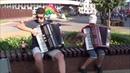 АМУРСКИЕ ВОЛНЫ! от крутых аккордеонистов Music!