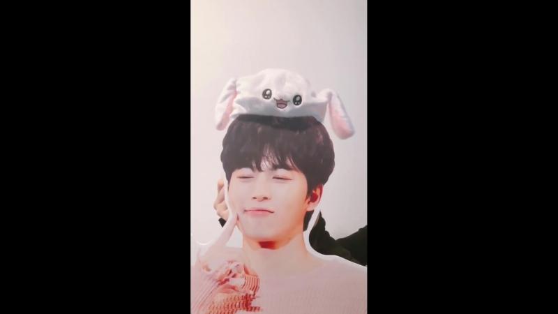 Hongbin bunny
