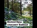 Волонтёры спасают Байкал | ROMB