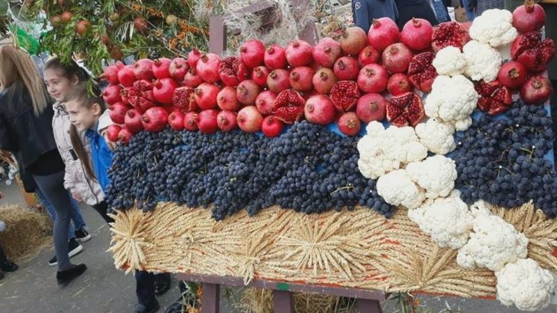 День урожая в Степанакерте собрал тысячу фермеров