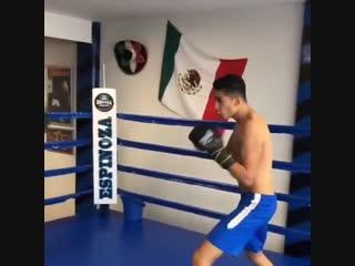 Боксерская тренировка на точность и координацию
