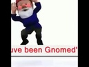 Im a gnome and you been nomeeee original meme