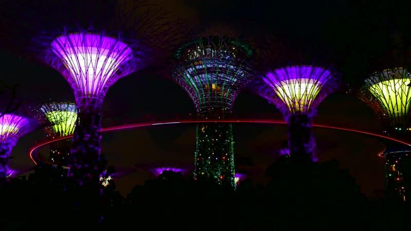 Супер деревья, Сингапур