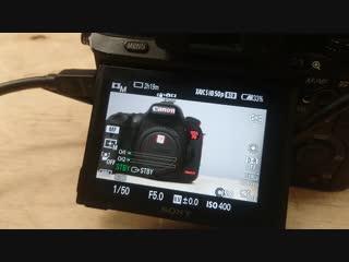 Одновременно вывод изображения на экран камеры и внешний монитор